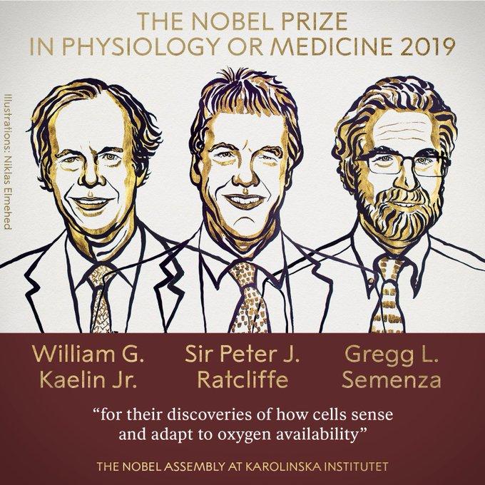 三位医学家同获2019年诺贝尔生理学或医学奖